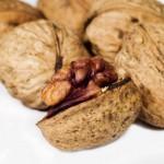 roubování ořechů vrtačkou