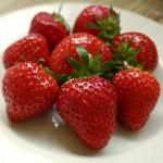převislé jahody ve speciálním substrátu