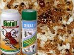 přípravky proti mravencům