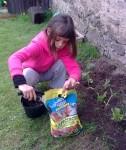 hnojení zahrady přírodními hnojivy