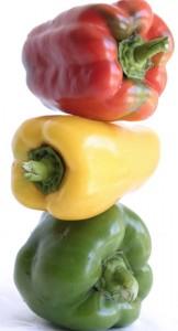 nové odrůdy paprik