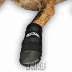 boty pro psy