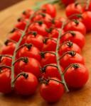 Rajče odrůdy Cherolla