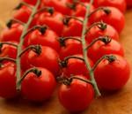 bio rajčata