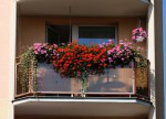 rozkvetly balkon