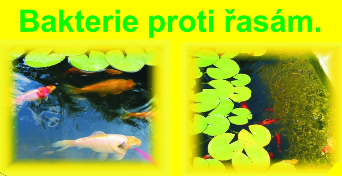 52c9b2b0a8e Mikroorganismy firmy SUBIO EKO–vynikající společník ZEOLITU! – Príma ...