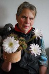 kaktus v kvetu