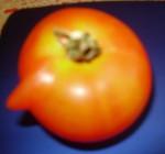 rajce s nosem