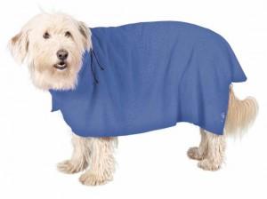 koupani psa v zime