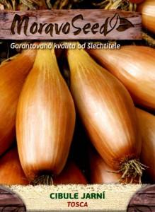 semena cibule