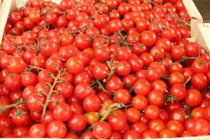 cherry rajcatka