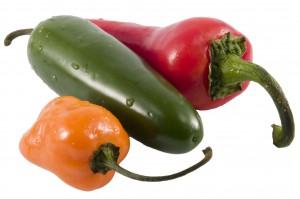 chilli papricky