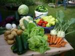 domaci zelenina