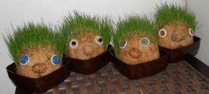 travní panáčci