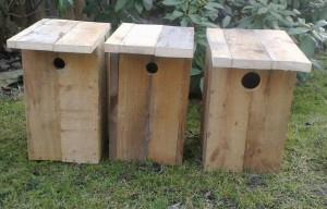 budky pro ptaky