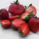 jahody nahled