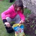 prirodni hnojiva
