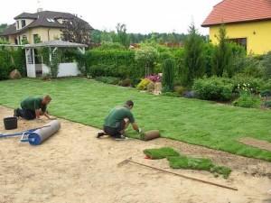 Pokládka trávníku
