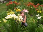 zahrada lilie