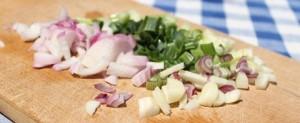 cibule salotka