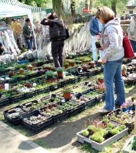 louny zahrada a dum