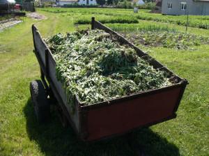 zbytky pro kompost