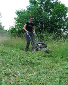 seceni a mulcovani vysoke travy