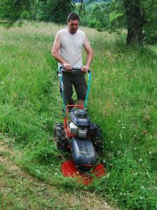 seceni vysoke travy