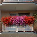 balkon 2013 nahled