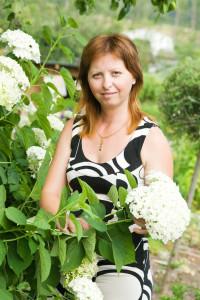 kvetouci hortenzie