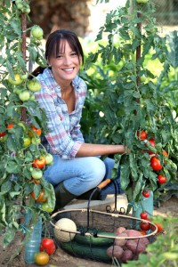 pestovani v komunitnich zahradach