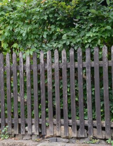 dreveny plot k renovaci