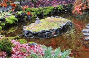 jezirko na podzim