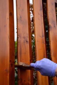 Natírání plotu vyjetým olejem