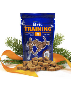 brit training