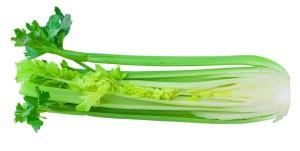 celer rapikaty
