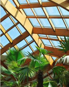palma zimni zahrada
