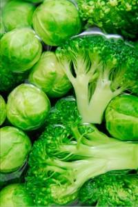 ruzickova kapusta a brokolice