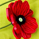 kniha kvetiny 1 nahled