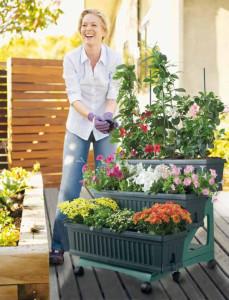 mini zahradka na balkon