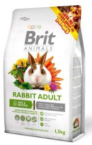 Brit_Animals_Rabbit_Adult