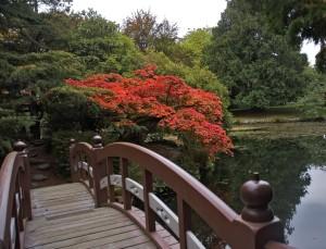japonska zahrada