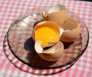 vejce zloutek