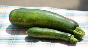 zelena cuketa