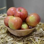 jablka na slame