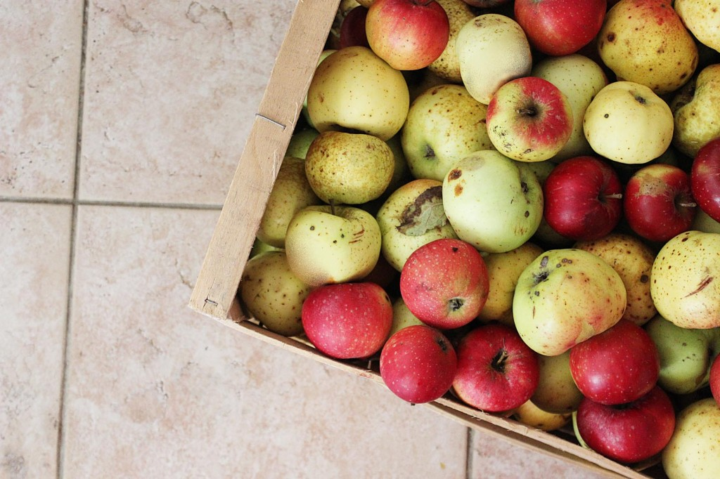 jablka na strudl