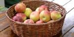 jablka v kosiku slider