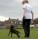pes chuze na voditku nahled
