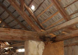 poškozený krov v důsledku dlouhodobého zatékání