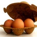 vejce v baleni nahled